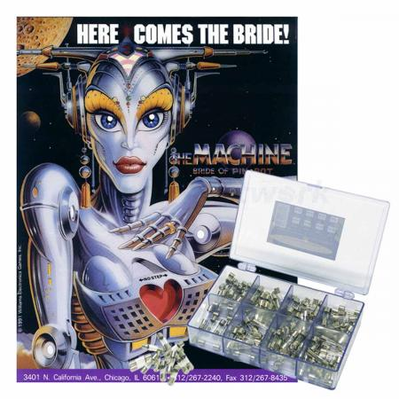 The Machine: Bride of Pinbot Sicherungssortiment